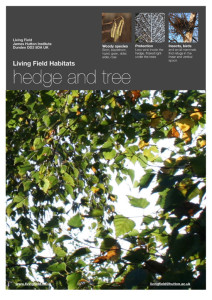 Poster for the hedge and tree habitat (Living Field)