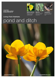 Pond and ditch poster (Living Field)