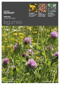 Legume poster (Living Field collection)