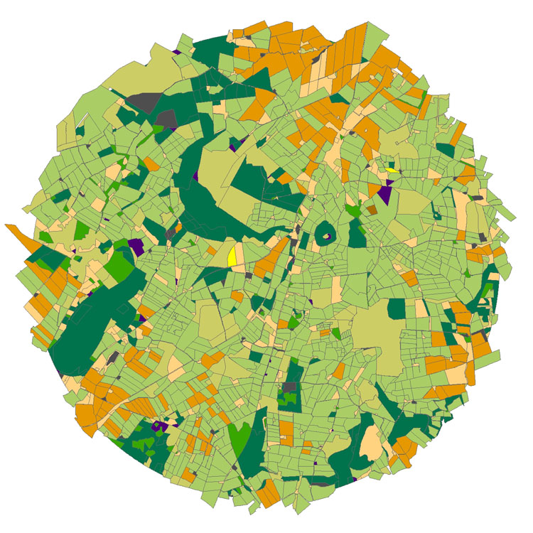 Small World - many grass fields in light green, blocks of trees in dark green, corn (cereals) in orange (image by Nora Queseda and Graham Begg)