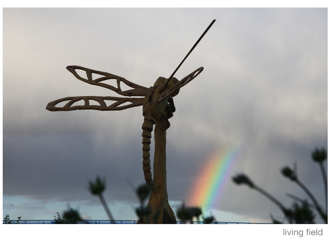 Dragonfly sculpture by Dave Roberts (Living Field)