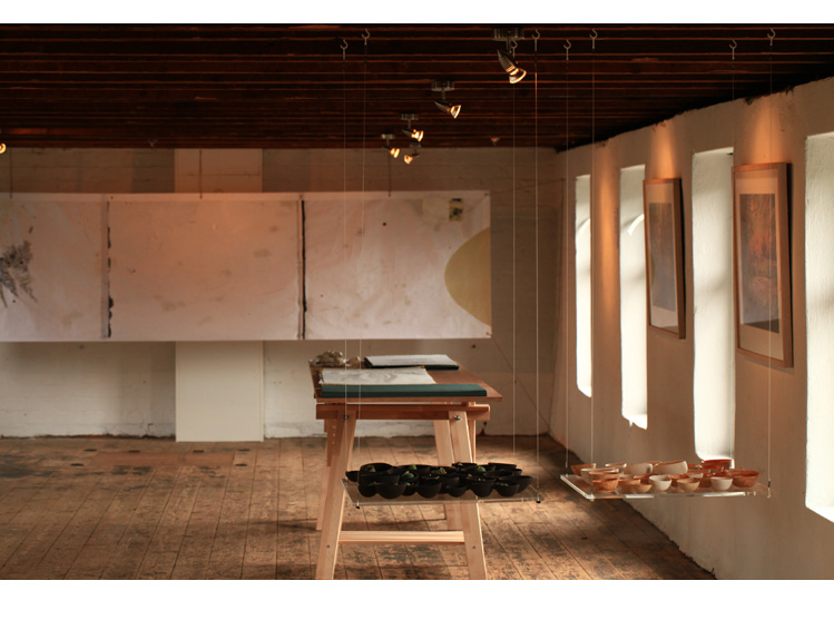 Upper exhibition room, Wall projects (Living Field)