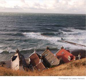 lf_lh_seahouses_1100
